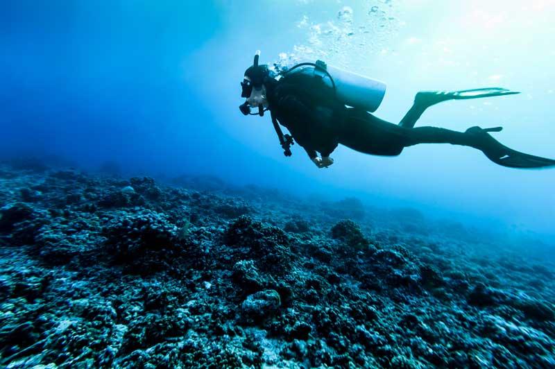 Diving, Rangiroa